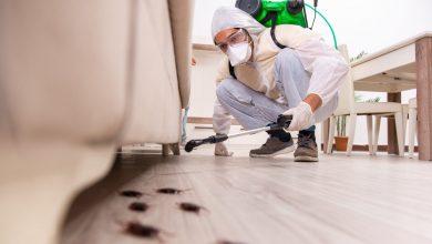 Photo of شركة مكافحة حشرات جابر العلى