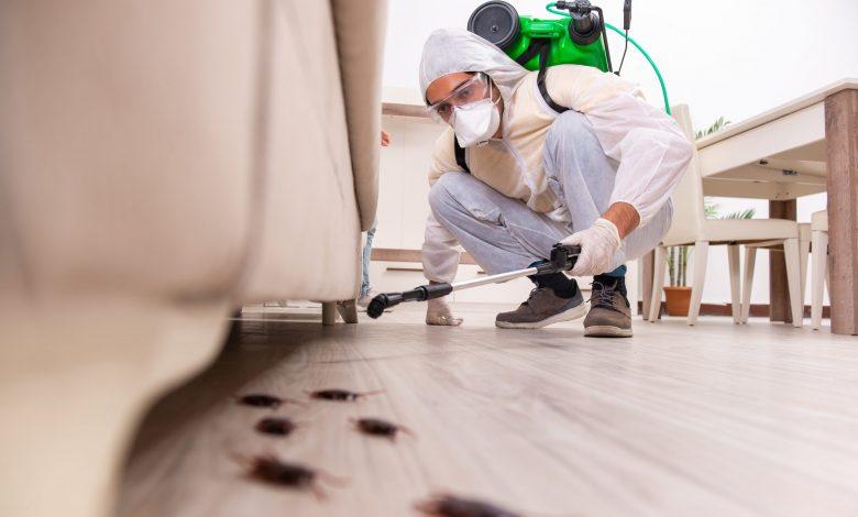 شركة مكافحة حشرات جابر العلى
