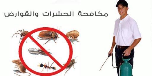 شركة مكافحة حشرات جنوب السرة
